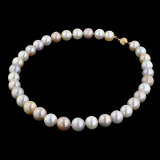 Pearlman's Collection Multi-colored Fresh water pearls