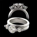 Whitney Boin Platinum Triad three stone ring sold with side diamonds weight .33 each total weight is .66,  double styled band 6.0 mm wide.  Great ring!!